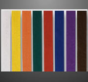 Coloured belt standard