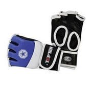 Topten Ultimate Fight MMA gloves, Blue/White