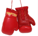 Mini boxing gloves Topten, Red