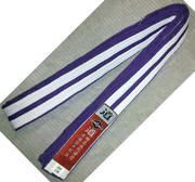 Blue Eagle Belt 5 cm, Purple/White 280 cm