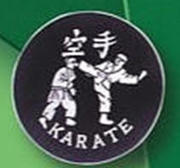 Patch Karate Kick